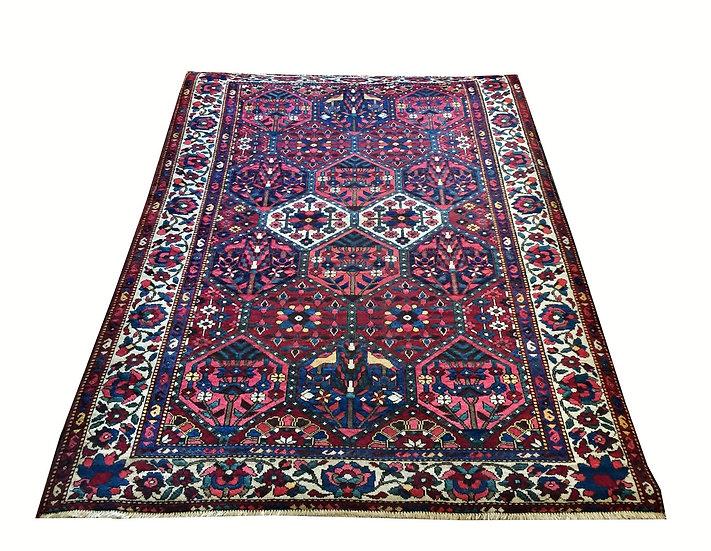 5A0025 Persian Bakhtiar 5x7