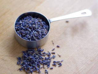 Using Lavender in Culinary Dishes: December 9th, 11 am - Noon