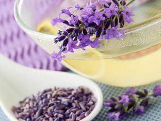 DIY Lavender Tea Bag Making with Donna Mansbart - Monday, NOV 18, 11 am - Noon