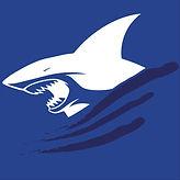 SHARKS-01.jpg