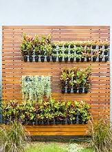 Vertical garden 2.jpg