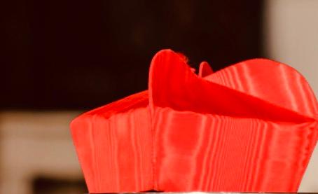 Ein Kardinal im Notwehr-Modus