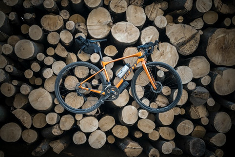 Log pile bike