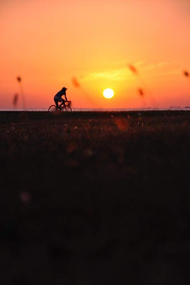 easy bike week iv __small.jpg