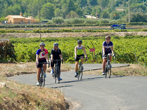 Female Road Cyclists