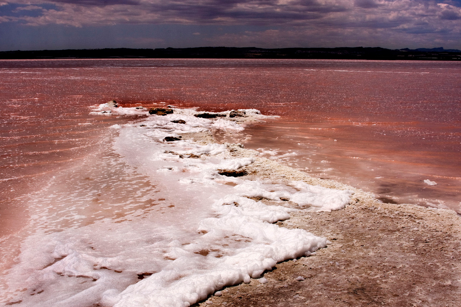 Salt lake Torrevieja