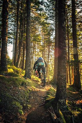 mtb bike iii.jpg