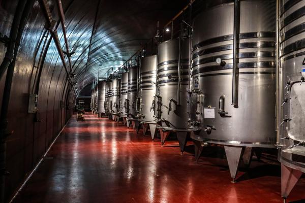 resized wine week 2.jpg