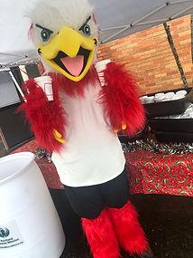 eagle mascot costume.jpg