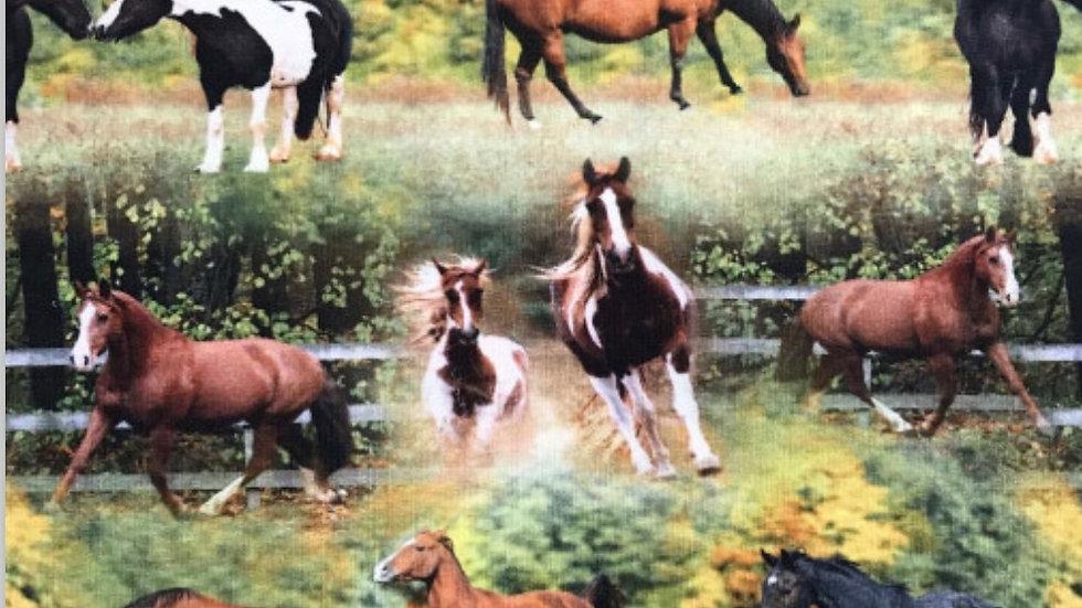 Hästar på grönbete
