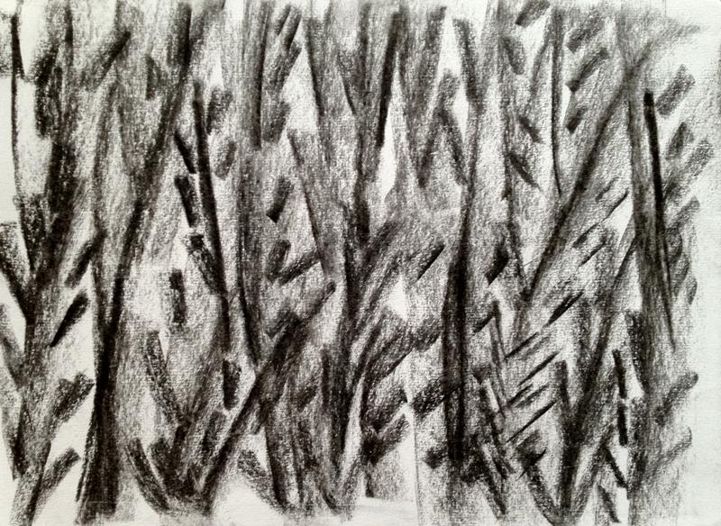 ג פחם על נייר  2012 008