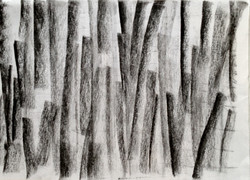 ג פחם על נייר  2012 020