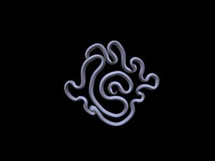 Untitled_50_00 (2019_11_04 16_00_27 UTC)