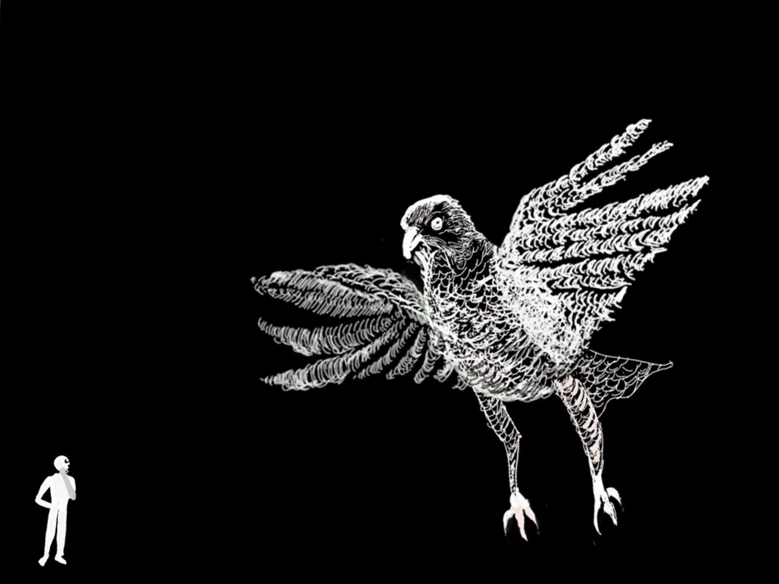 Little man big bird -