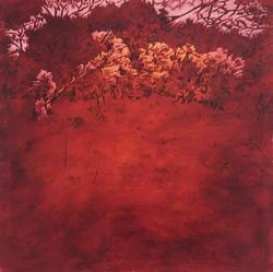oil on canvas 30x30, 79, 2015