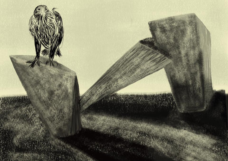 bird on fractures
