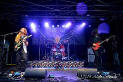 Arthur's Day Festival in Grandvilliers 2014 (98)