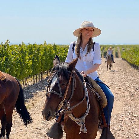 Mendoza Argentina Horse