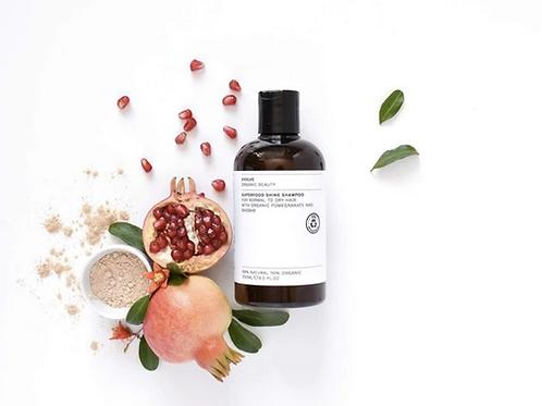 Evolve Beauty Organic Superfood Shine Shampoo natural vegan organic haircare zero waste shop UK
