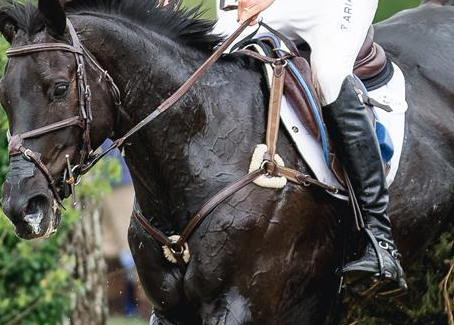 US Equestrian Announces Updates to Training Lists for U.S. Eventing Pathway Program