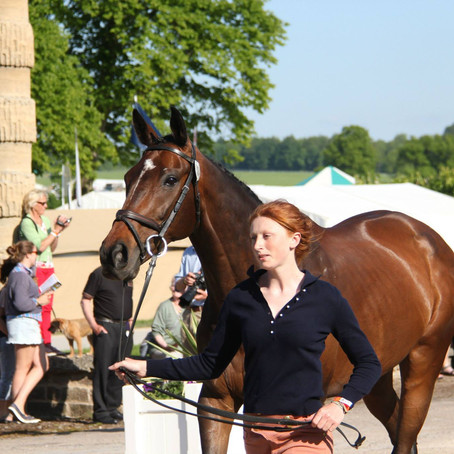 Eventing Radio Show Episode #528 by Bit of Britain
