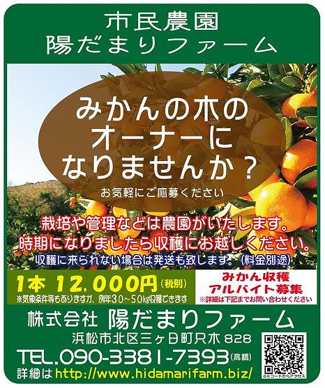 みかんの木のオーナーチラシ(改訂版).jpg