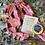 Thumbnail: Bearly Awake - Rose