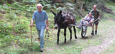 la randonnée en Joëlette et âne