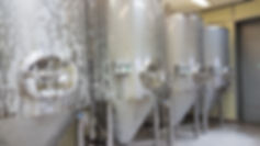 Fermenting CCT 20 HL