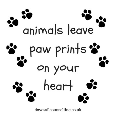 Pet Bereavement Counselling