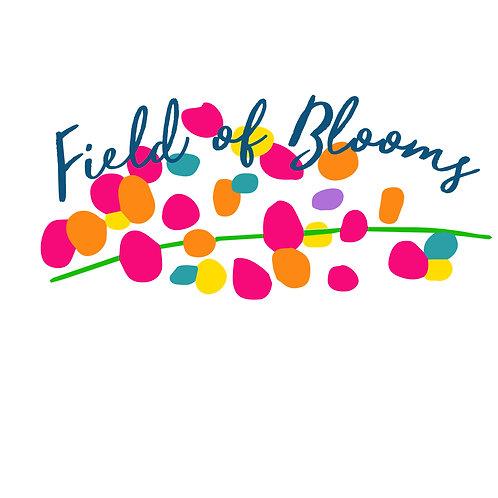 Tall Phlox, mix - Field of Blooms