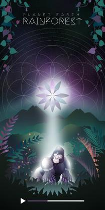 Meditation Scene (Rainforest)