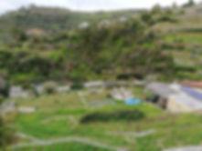 agrilunassa_garden.jpg