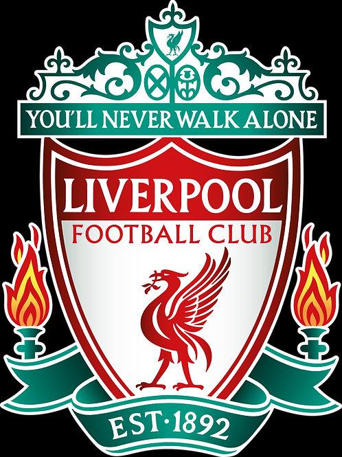 WBA v Liverpool 21/4/2018 - bilet junior