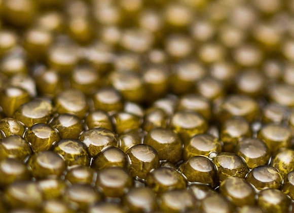 Caviar Shrenkii - Dauricus