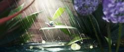 lightsequence rain sunlight
