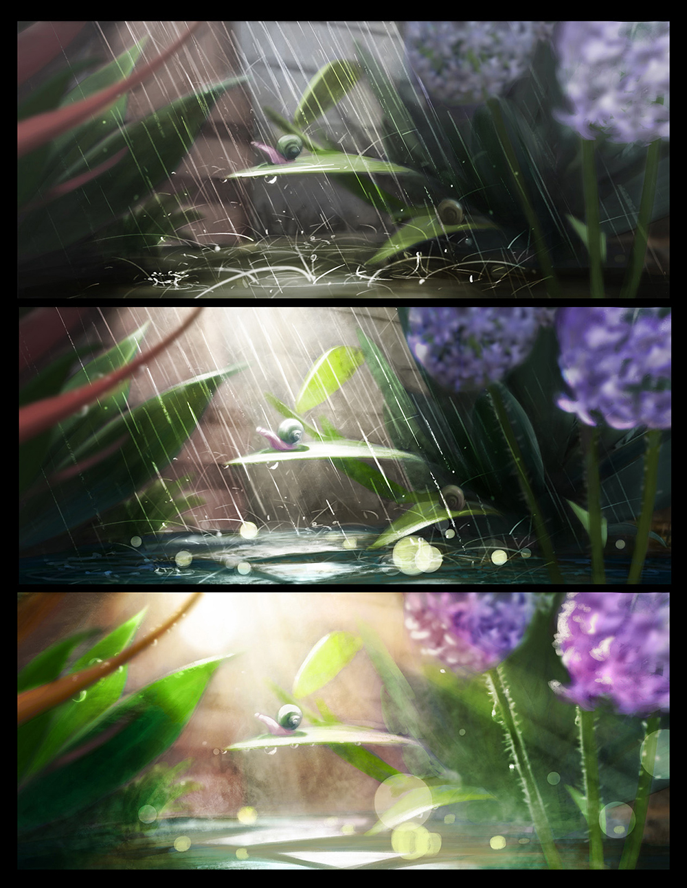 light sequence study
