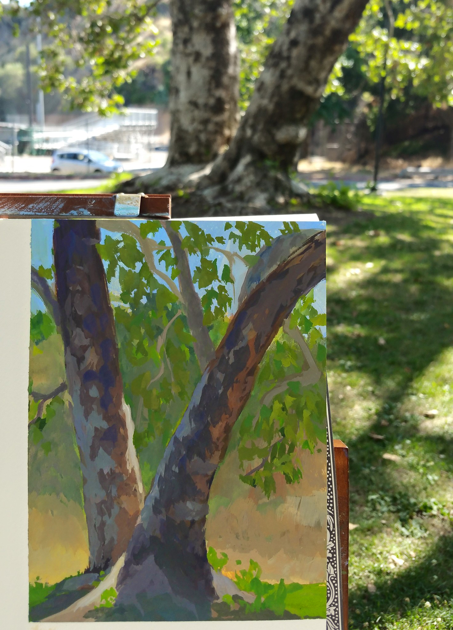 Verdugo Park, CA