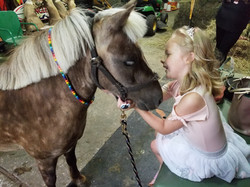 pony special