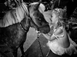 blackandwhite pony