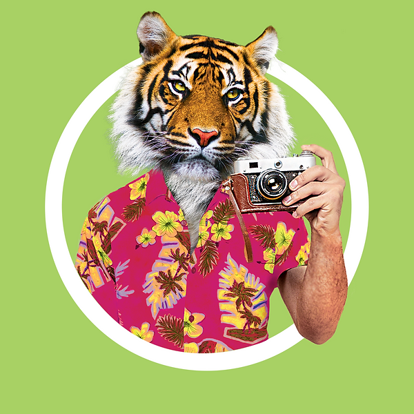 Page couverture tigre
