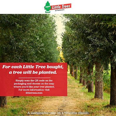 littletreesIG.jpg