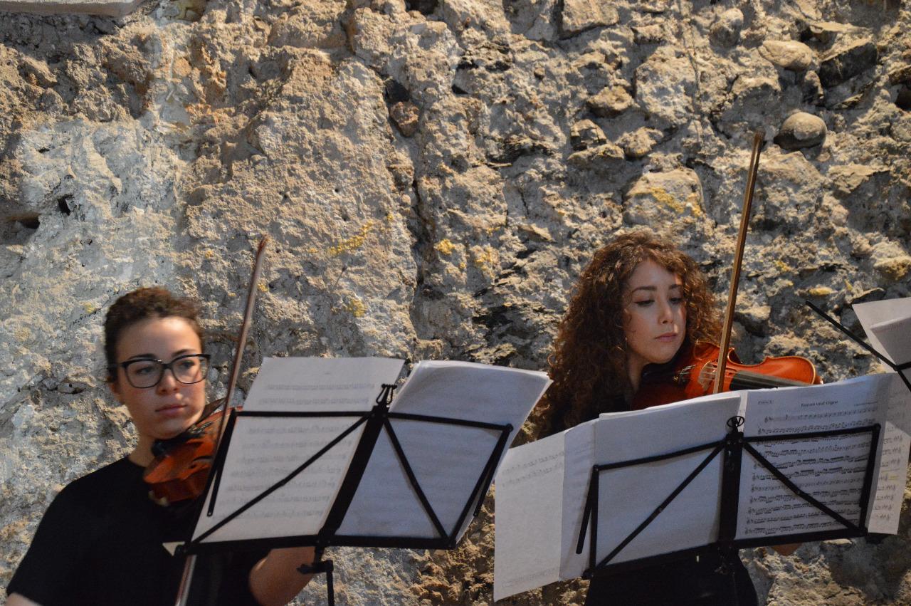 concerto FAI - maggio 2015 (9)