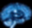NEUROENDORINOLOGY_edited.png
