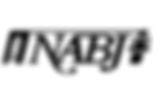 Colorlines Screenshot NABJ Logo for NOW