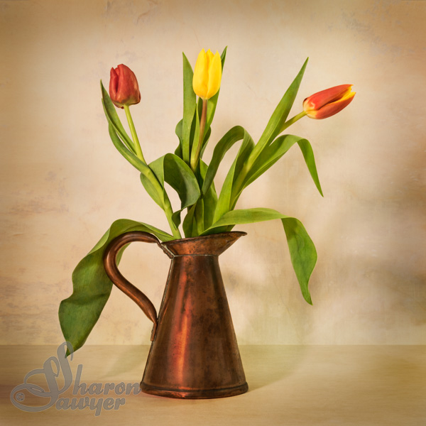 Tulips in Copper Jug