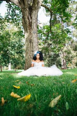 Wedding Accessories - Veil