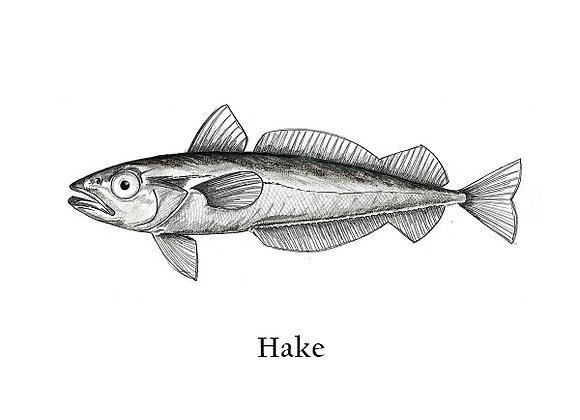Hake 150 – 200g