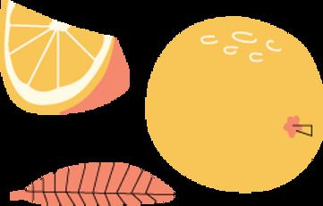 naranjas 2blog.png