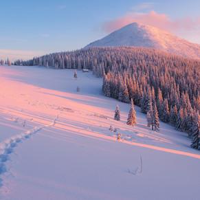 зима фон 1.jpg